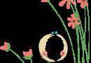 LogoBambino